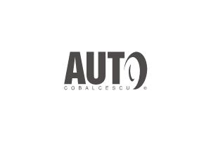 Service, Sediu de firma Auto Cobalcescu